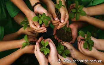 Diputados aprobó la Ley de Educación Ambiental - Sobre Tiza