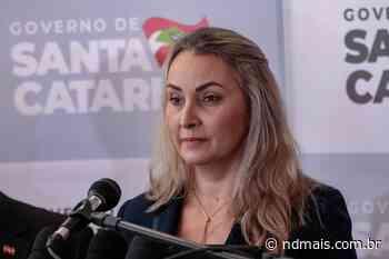 Vice Daniela Reihner viajou hoje a Brasilia - ND Mais