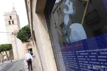Frontignan : retour du Bestiaire méditerranéen sur les vitrines de la salle Izzo - actu.fr