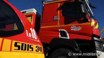 Villeveyrac : un feu de végétation basse parcourt six hectares - Midi Libre