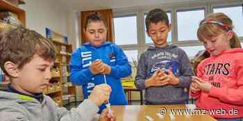 Wie Kindergärten und Schulen im Raum Bernburg Schnelltest auf Coronavirus einsetzen: Die Bereitschaft ist da - Mitteldeutsche Zeitung