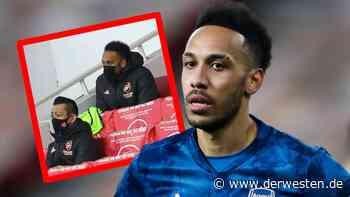 Pierre-Emerick Aubameyang kann es nicht lassen – BVB-Fans fassungslos - Der Westen