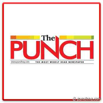 Distressed aircraft free to land in Lafia – FG - The Punch