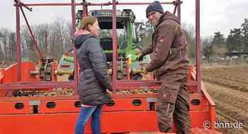 Landwirt mit Laptop: Bio-Bauer in Oberhausen-Rheinhausen nutzt autonome Kartoffel-Legemaschine - BNN - Badische Neueste Nachrichten