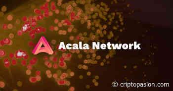 Acala Network gana una ranura parachain en Polkadot (DOT) testnet - CriptoPasion