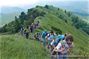 Vestone - Alpinismo Giovanile, il progetto educativo del Cai - Valle Sabbia News