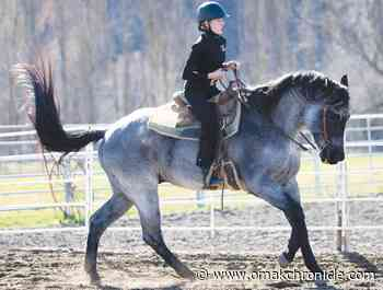 Youth compete in equestrian event | Sports | omakchronicle.com - Omak Okanogan County Chronicle