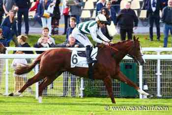 Prix Cor de Chasse (Listed-race), mardi à Fontainebleau. TERTIUS rentre et gagne - Canal Turf