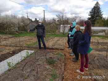 Un atelier jardinage dans le cadre du Défi alimentation - La République du Centre
