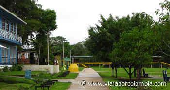▷ Firman convenio para construcción de sendero ecoturístico en Puerto Nariño - Noticias - Viajar por Colombia