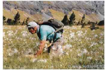 Orthez : une exposition pour découvrir la vie et l'œuvre du grand botaniste Jean Vivant - Sud Ouest