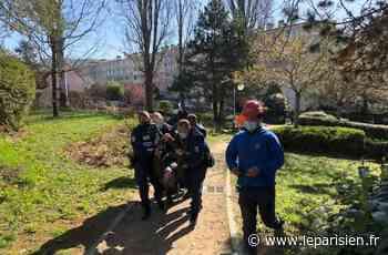 Fontenay-aux-Roses : un ancien élu évacué du square des Potiers où quatre arbres ont été coupés - Le Parisien
