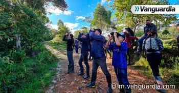 Niños y jóvenes de Encino se forman como guías de aviturismo - Vanguardia