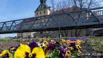 Schloss Moritzburg in Zeitz bekommt neue Brücke - RTL Online