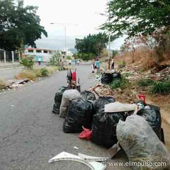 ¡Buena iniciativa! Vecinos de La Mora en Cabudare hacen limpieza a sus calles #29Mar - El Impulso