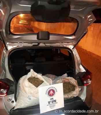 Acorda Cidade   Dilton Coutinho   PM apreende 40kg de maconha em Serrinha - Acorda Cidade