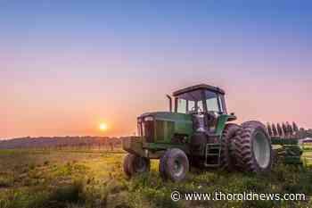 Beamsville grape grower advocates for regenerative farming practices - ThoroldNews.com