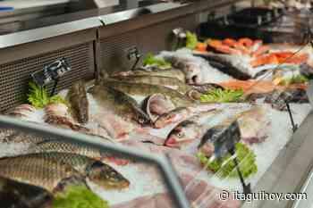 Recomendaciones para comprar pescado de manera segura en Semana Santa - Itagüí Hoy