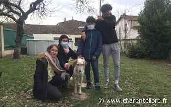 Gensac-la-Pallue: le chien donne l'alerte et sauve une famille de l'incendie - Charente Libre