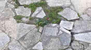 Diano Marina, «Piccolo parco giochi via Campodonico in stato di semi abbandono» - Riviera24