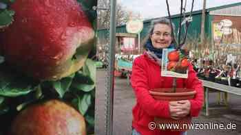 Vorwerk Gartenwelt in Rastede - Nordwest-Zeitung