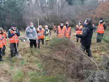 Cantal. Les élèves du lycée Louis Mallet de Saint-Flour restaurent une zone humide - Actu Cantal
