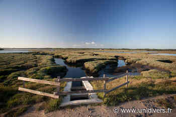 Découverte de la baie de Lanton samedi 20 février 2021 - Unidivers