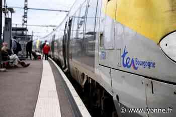 La ligne de TER Laroche-Migennes/Auxerre fermée à partir du 12 avril pour rénovation - L'Yonne Républicaine
