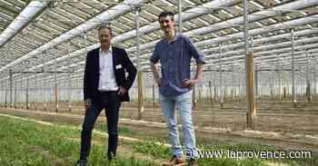 Économie   Meyreuil - Serre solaire : pari réussi pour Tenergie - La Provence