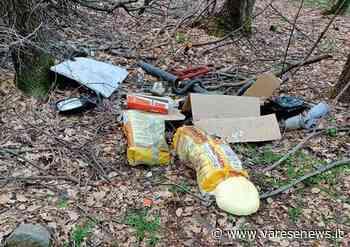 """Rifiuti nei boschi di Fagnano Olona, i volontari non bastano: """"Gli sversamenti continuano"""" - varesenews.it"""