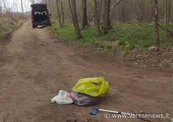 Meno lavoro? «Allora inizio a pulire i boschi di Fagnano Olona» - varesenews.it