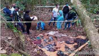 Esclarecen homicidio de sexagenario, en la Colonia Tovar - El Universal (Venezuela)