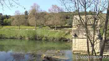 Gallargues-le-Montueux : chantier Natura 2000 sur les berges du Vidourle - ViàOccitanie