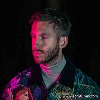 Calvin Harris Says NFTs 'Can Completely Revolutionize The Music Industry' - EDMTunes