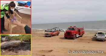 Un picado por mantarraya y dos incendios en Huatabampo - Diario del Yaqui
