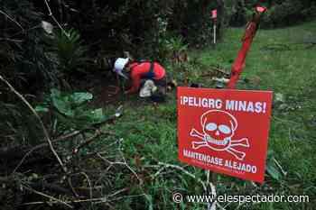 Por territorios minados, 1.500 indígenas están confinados en Frontino (Antioquia) - El Espectador
