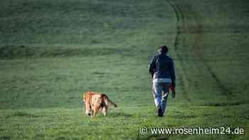 Polizei: Hund bei Seeon-Seebruck angeschossen - Polizei ermittelt - rosenheim24.de