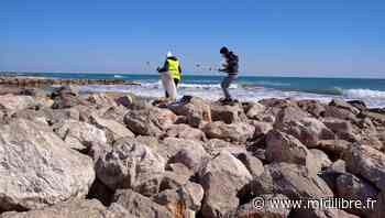Frontignan : quatre associations vont nettoyer la plage lundi 5 avril - Midi Libre