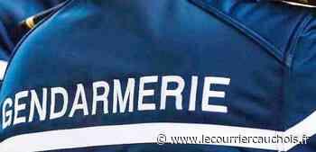 Près de Pavilly. Les gendarmes appelés pour raisonner un homme suicidaire - Le Courrier Cauchois