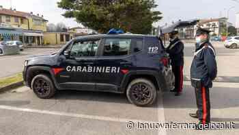 Vigarano Mainarda, trovato e denunciato topo d'appartamento - La Nuova Ferrara