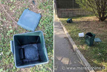Ritiro immondizia da parte di Silea - MerateOnline - Merate Online