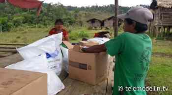 Unidad de Víctimas envió ayuda humanitaria a indígenas de Dabeiba - Telemedellín