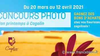 Un concours photo à Cogolin - France Bleu