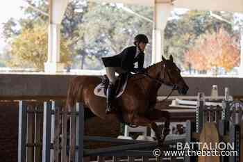 A&M equestrian earns two NCEA First Team All-American honors - Texas A&M The Battalion