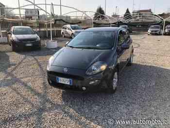 Vendo Fiat Punto 1.2 8V 5 porte Young usata a Cantu', Como (codice 8876470) - Automoto.it - Automoto.it