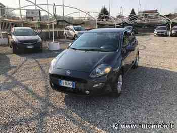 Vendo Fiat Punto 1.2 8V 5 porte Young usata a Cantu', Como (codice 8876470) - Automoto.it