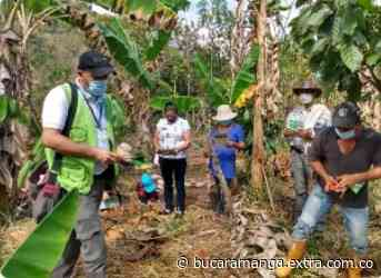 Productores agrícolas de Berbeo, aprenden a mejorar sus cultivos - Extra Bucaramanga