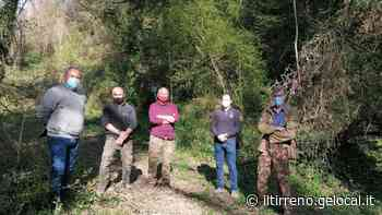 L'area di raccolta del tartufo bianco si rafforza a Castelfiorentino - Il Tirreno