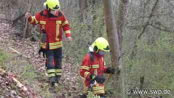 Feuer in Bad Urach: Hackschnitzel brennen in schwierigem Gelände - SWP