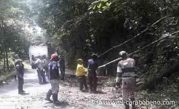 Restablecido el tránsito en la carretera Ocumare de la Costa - El Carabobeño